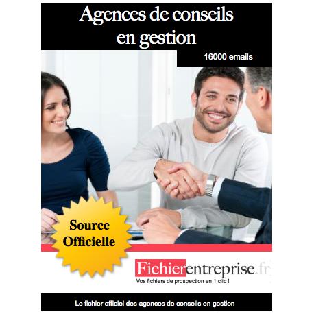 Fichier des agences de conseils en gestion