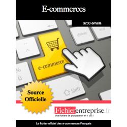 Fichier des e-commerces