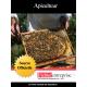 Fichier des apiculteurs