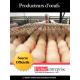 Fichier des producteurs d'oeufs