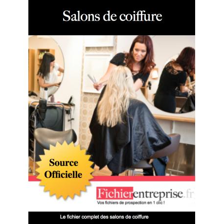 Fichier des salons de coiffure