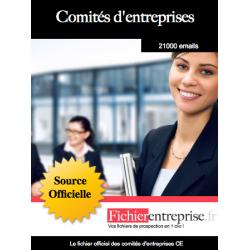 Fichier complet des comités d'entreprise ce
