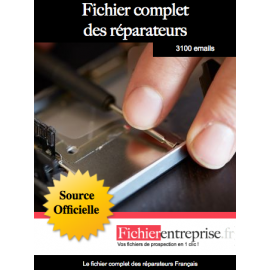Fichier complet des réparateurs