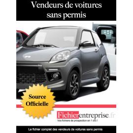Fichier vendeurs de voitures sans permis