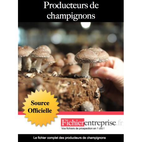 Fichier producteur de champignons