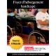 Fichier foyers d'hébergements handicapés